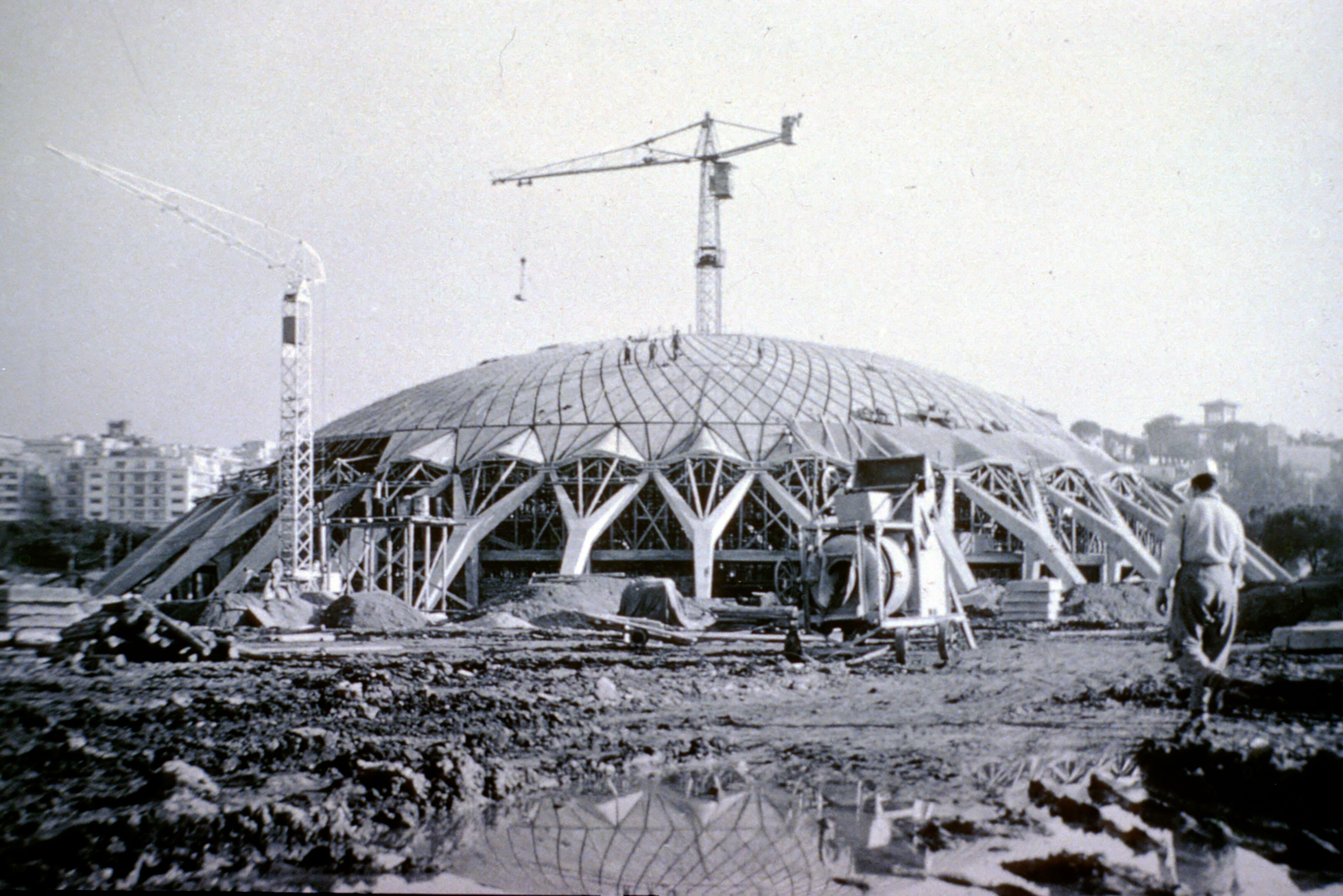Perspectives On The Evolution Of Structures  Little Sports